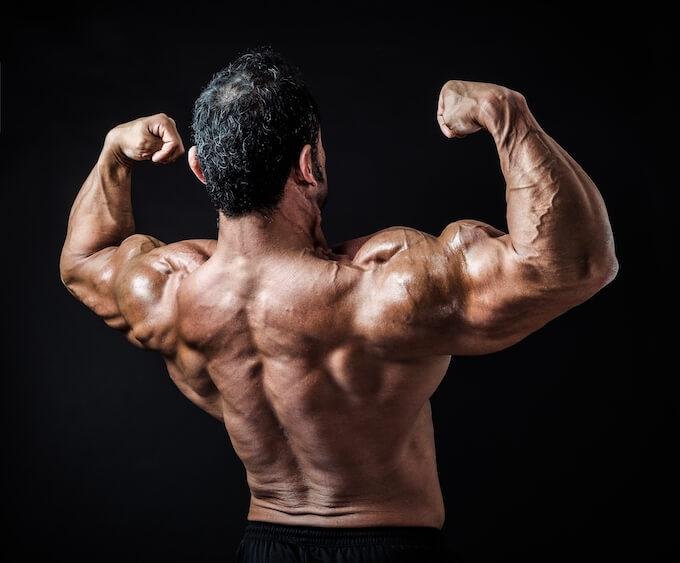 筋肉隆々の背中